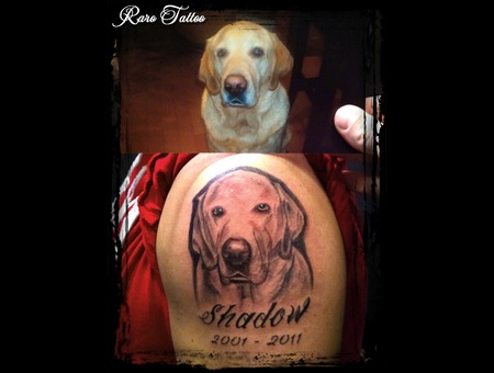 Portrait  Dog  Black  Grey  Tattoo  Realism Black White
