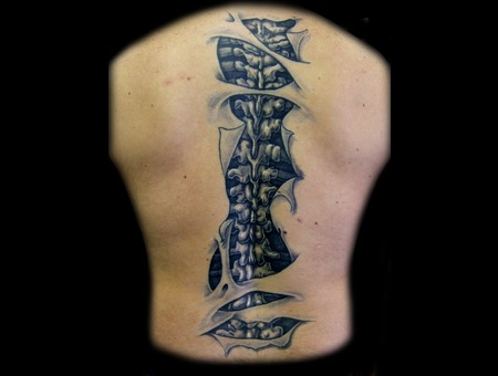 Back  Spine  Skin Tear Black Grey