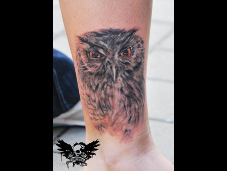Owl Black White