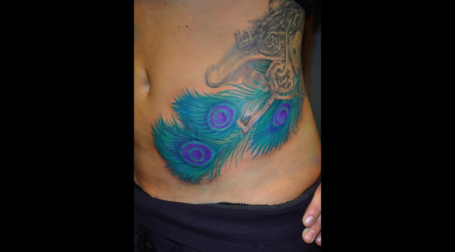 Peacock Feather  Color  Cover Up Color