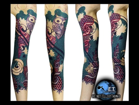 Sleeve  Fractals  Owl  Color Color