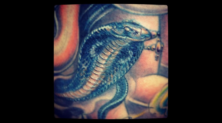 Snake  Cobra  Reptiles  Goddess   Color Back