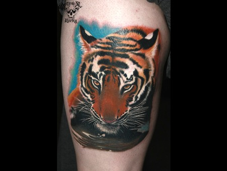 Tiger Portrait Color Lower Leg
