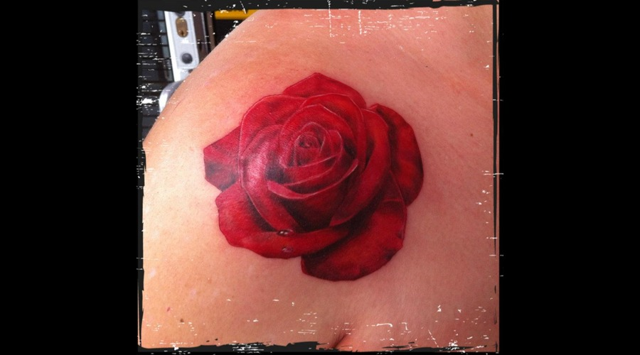 Rose  Flower  Shoulder  Red Color