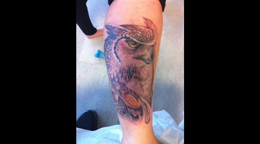 Owl And Skull Color