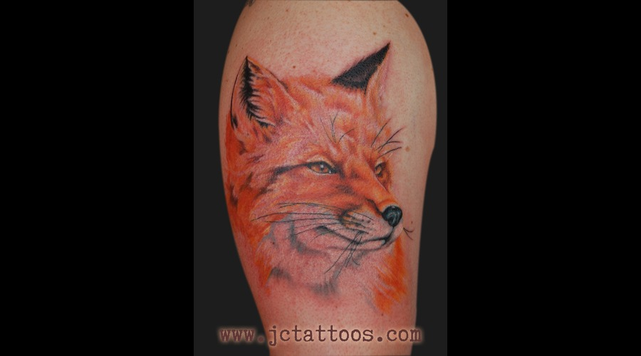Fox  Portrait  Photo Realism  Realism Color
