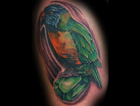 Parrot  Jewel  Realism Color Arm