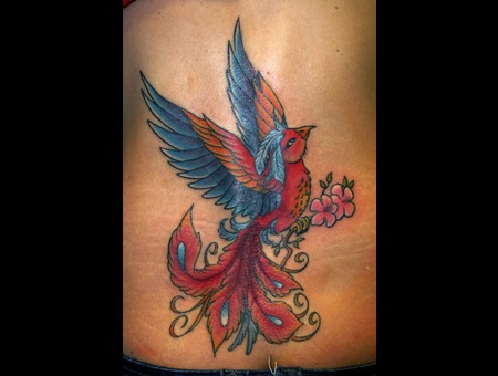 Coverup Color