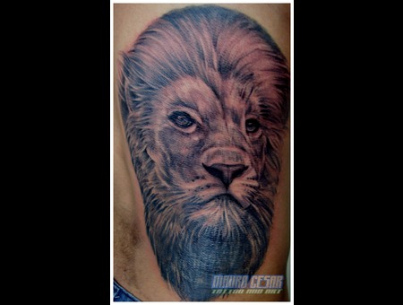 Tattoo Lion  Realistic  Leão Tattoo Black White