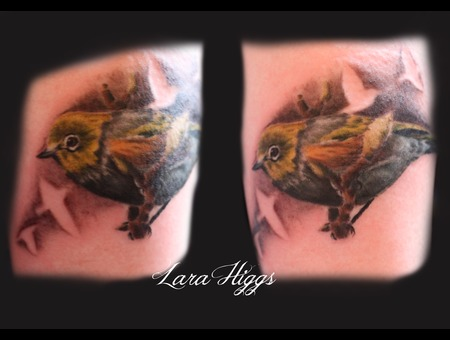 Bird  Realism  Wax Eye  Feminine Color Forearm