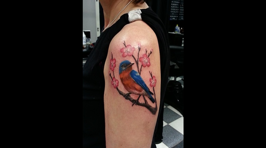 Bird  Realistic  Photorealistic  Cherry  Blossom  Bluebird  Oriental  Asian Color Shoulder