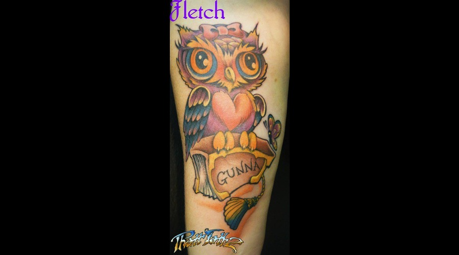 Colour Owl Bird  Color
