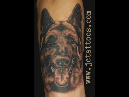 German Shepherd  Realism  Portrait Black White