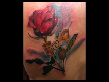 Rose Flower Realism Realistic Color Back