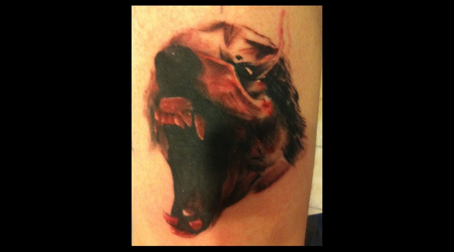 Wolf Horror Abstract Color Arm