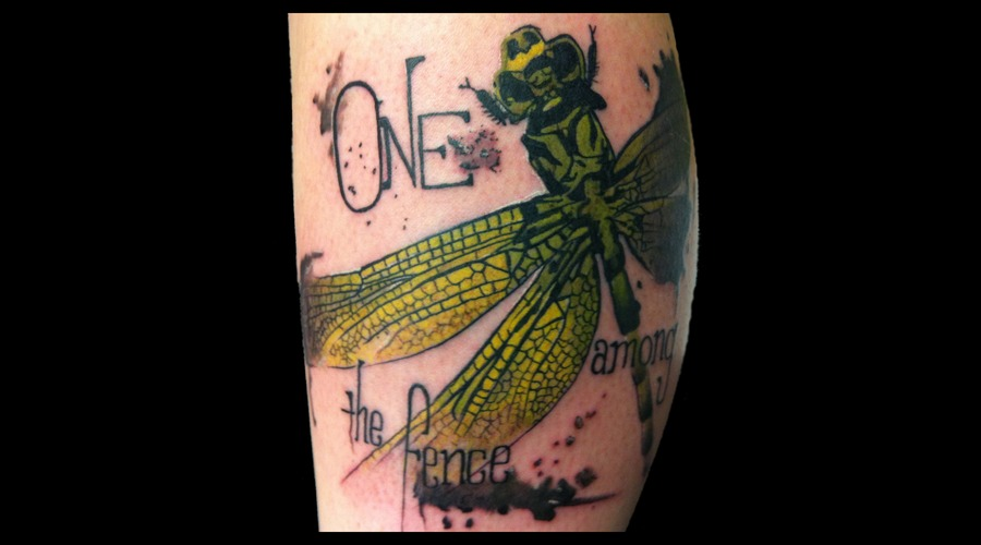 Dragonfly Abstract Trash Polka Coheed Cambria Fence Insect Color Thigh