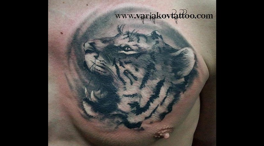 Tiger Black White