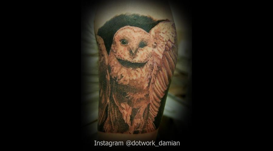 Dotwork Owl Tattoo  Black White