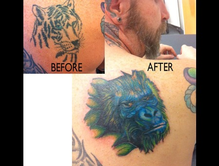 Cover Up Color Shoulder