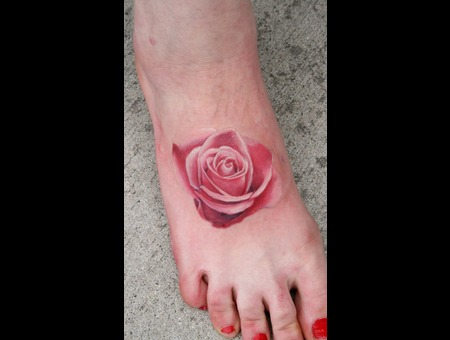 Rose  Realistic Rose  Pink Rose  Foot Color