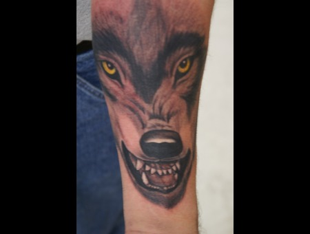 Wolf  Wildlife Arm  Color