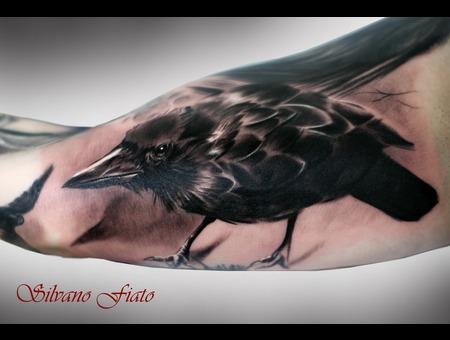 #Silvano Fiato #Crow #Raven Black White