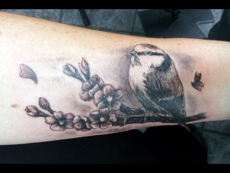 Bird Black Grey Forearm
