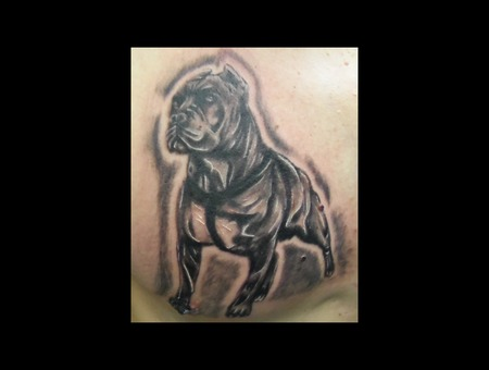 Bully Breed Black And Grey Dog  Demongrafix666 Synyster Ink  Jon Barber Black White