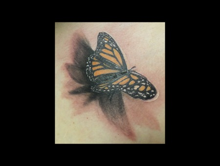 Photo Realistic 3d Butterfly Demongrafix666 Synyster Ink  Jon Barber Color