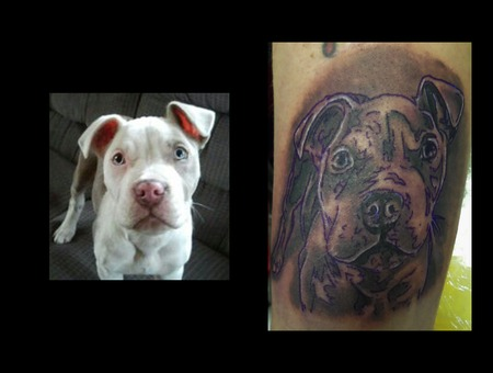 Portrait Of Guys Dog Black And Grey Demongrafix666 Synyster Ink  Jon Barber Black White