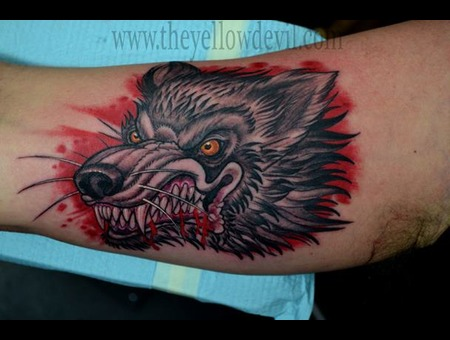 Wolf Color