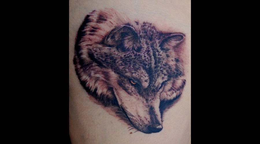 Wolf Thigh Realistic Portrait Black White Thigh