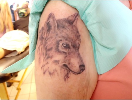 Wolf  Realism  Black And Gray Black White