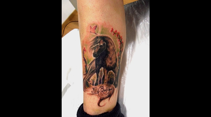 Horse Dreams  Tattoo Color
