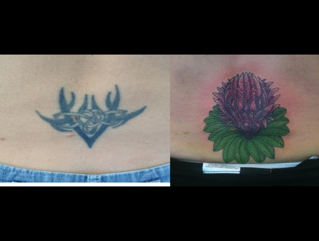 Cover Up  Lily  Base Of Back  Color