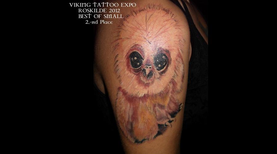 Bird'small'owl'jeff'brasov'romania' Color Shoulder