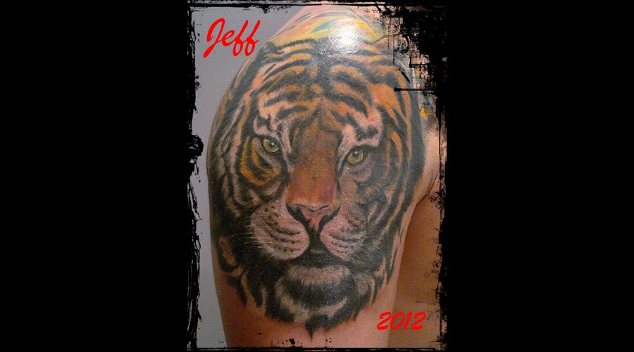 Tiger'color'jeff'brasov'arm'romania' Color Shoulder