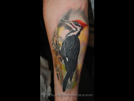 Woodpecker Gus Kalavera Laughing Buddha Tattoo Seattle Tattoos Color