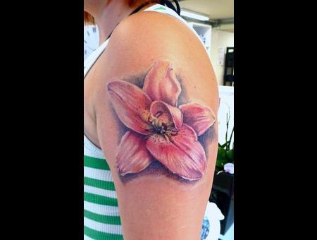 Lily Color Arm