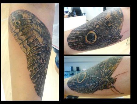 Owlbutterfly Color Arm