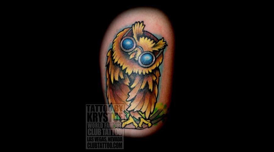 Owl  New School  Cartooney  Color Color