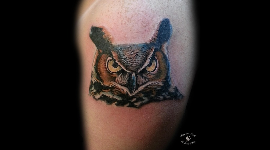 Owl  Realism  Color Arm