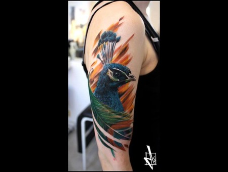 Peacock Dariusz Ds Wild Catz Tattoo Warrington United Kingdom Color Arm