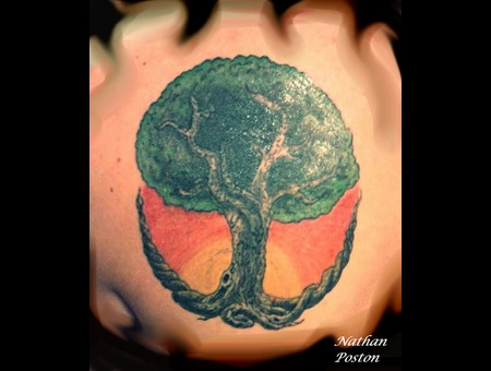 Cover Up Tree Color  Freehand Color