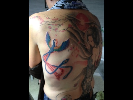 Geisha  Japanese  Bird  Back Color