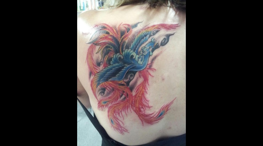 Phoenix  Coverup  Japanese  Traditional  Color Shoulder
