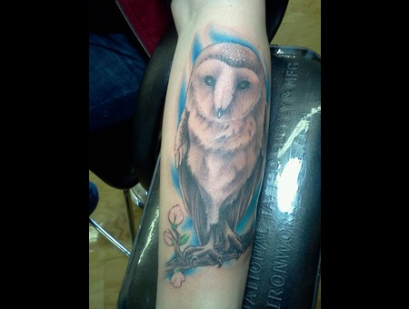 Owl  Realism   Color Forearm