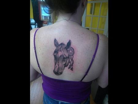 Animal Black Grey Back