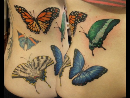 Butterflies Color Hip
