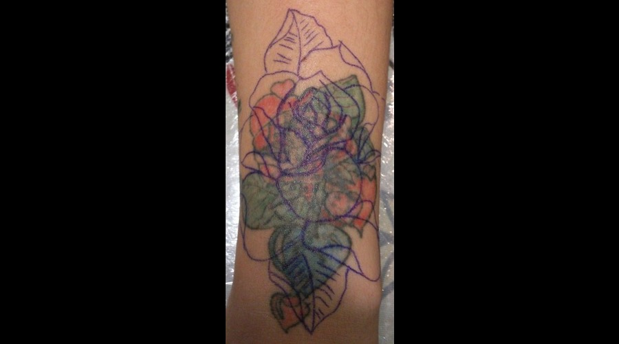 Cover Up  Stages  Flower  Rose  Colour  Freehand Color